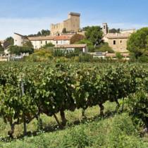 Abonnement vin Parcours Initiatique: La Vallée du Rhône