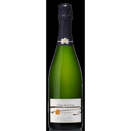 Champagne Françoise Bedel-L'Âme de la Terre 2004