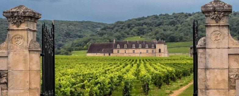 Le Clos de Vougeot - Grand Vin de Bourgogne