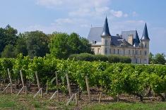 vin de Bordeaux appellation Côtes de Bourg