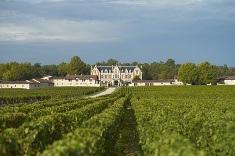 Appellation Margaux - Vin de Bordeaux